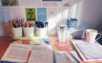Dnevnik jednog maturanta/budućeg studenta