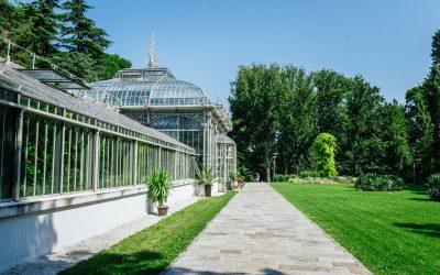 Botanička bašta – oaza u centru grada